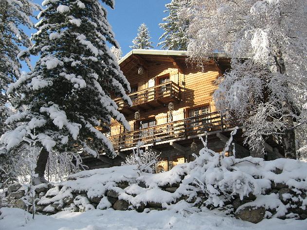 Chalet  Ski Lodge