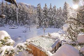 chamonix_chalet_la_foret_winter_201822.jpg
